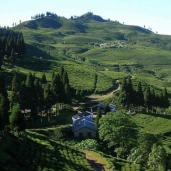 ilam-nepal