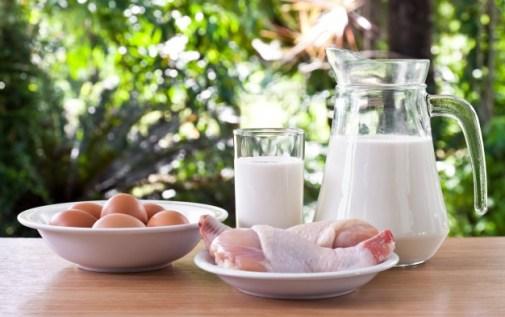 milk-drink-health-fat-healthy_1172-218