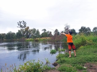 Fly-fishing on the river