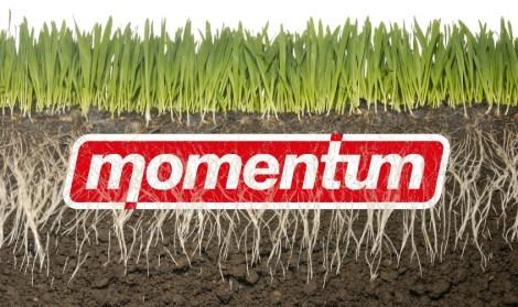 momentumgrassroots