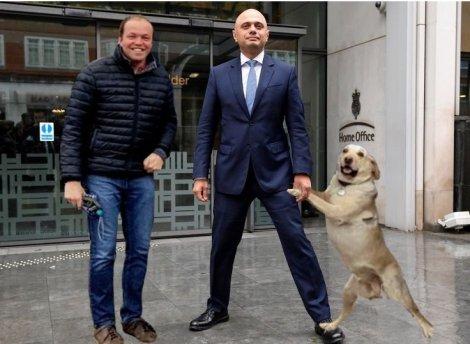 javid dog