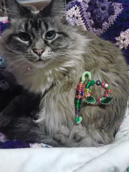 A thoroughly weirded-out kitty plays with festive ornaments