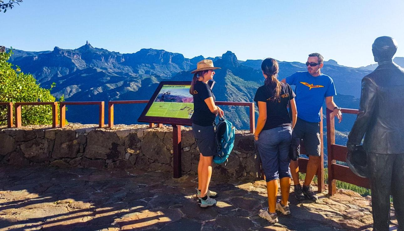 private tours gran canaria