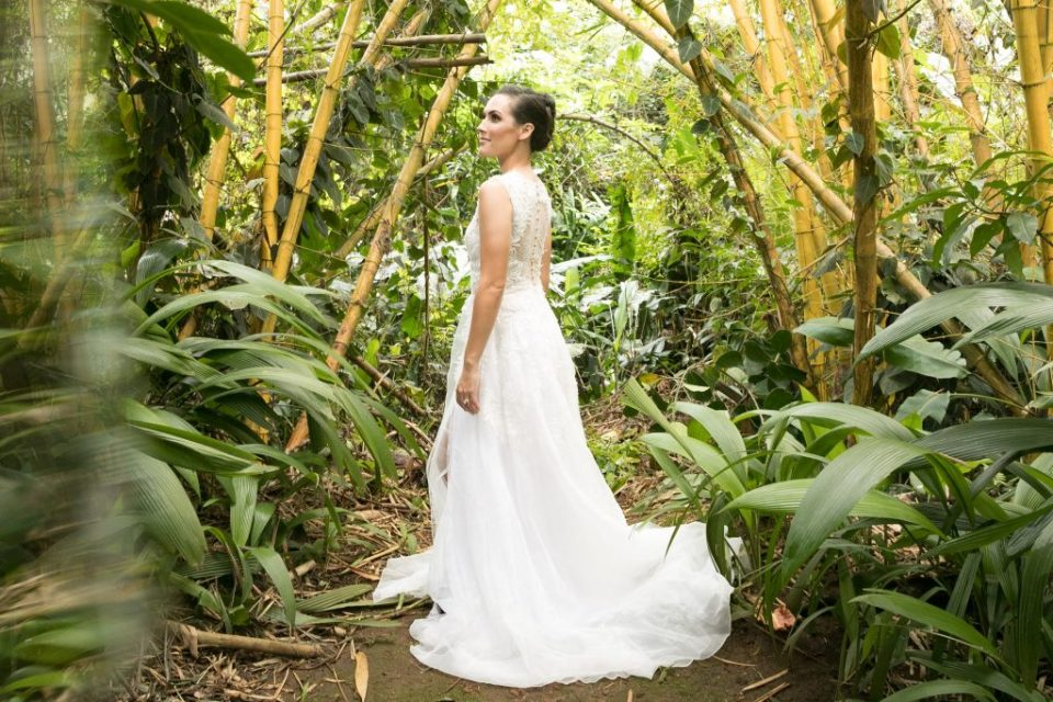 bride in bamboo forest Hawaii haiku gardens