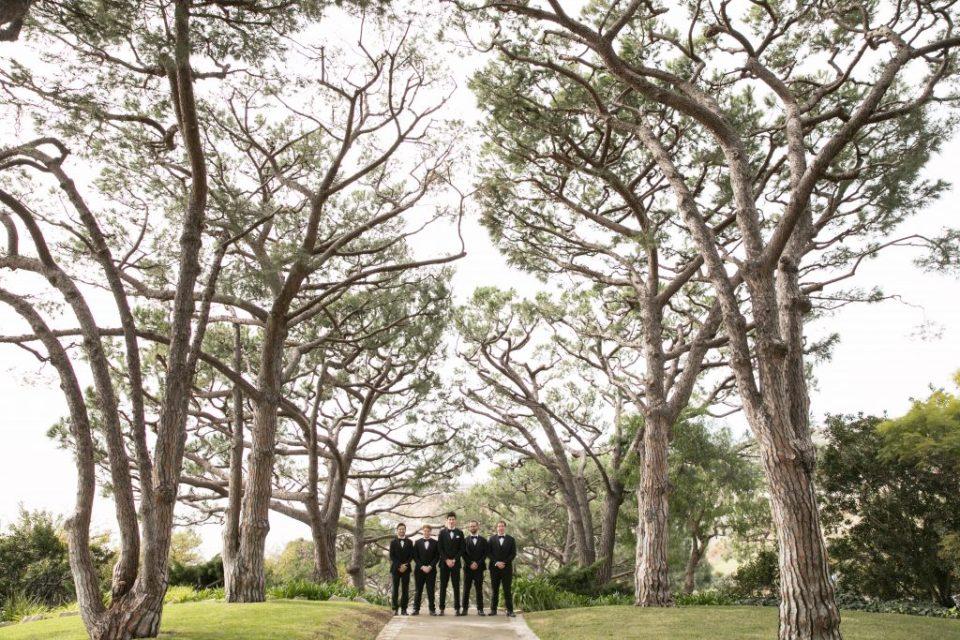 groomsmen with scenic trees