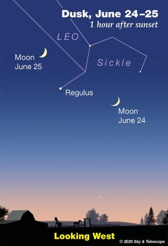 Crescent Moon passing Regulus, June 24-25, 2020