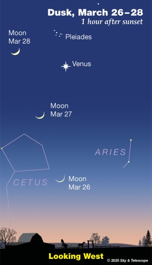 Moon, Venus, Pleiades at dusk, March 25-28, 2020