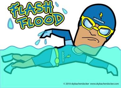 flashflood.2010