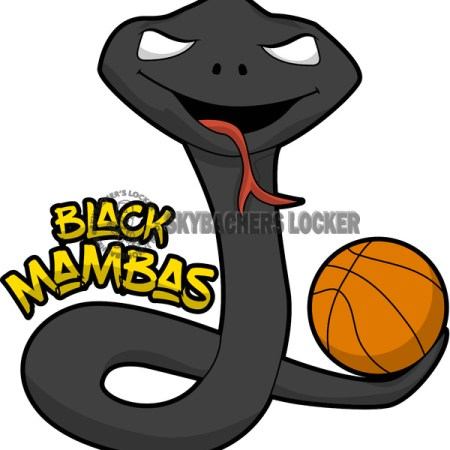 Black Mamba Team Logo - Skybacher's Locker