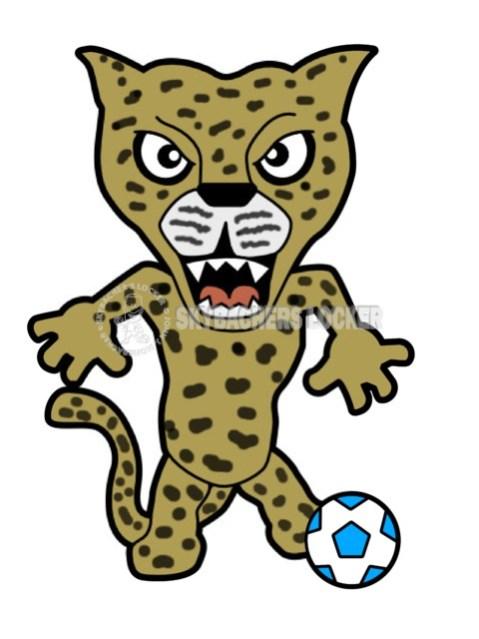 Pouncy the Soccer Leopard - Skybacher's Locker
