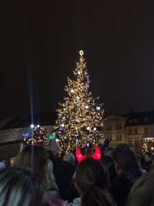 Christmas tree on Zelny Trh square 2