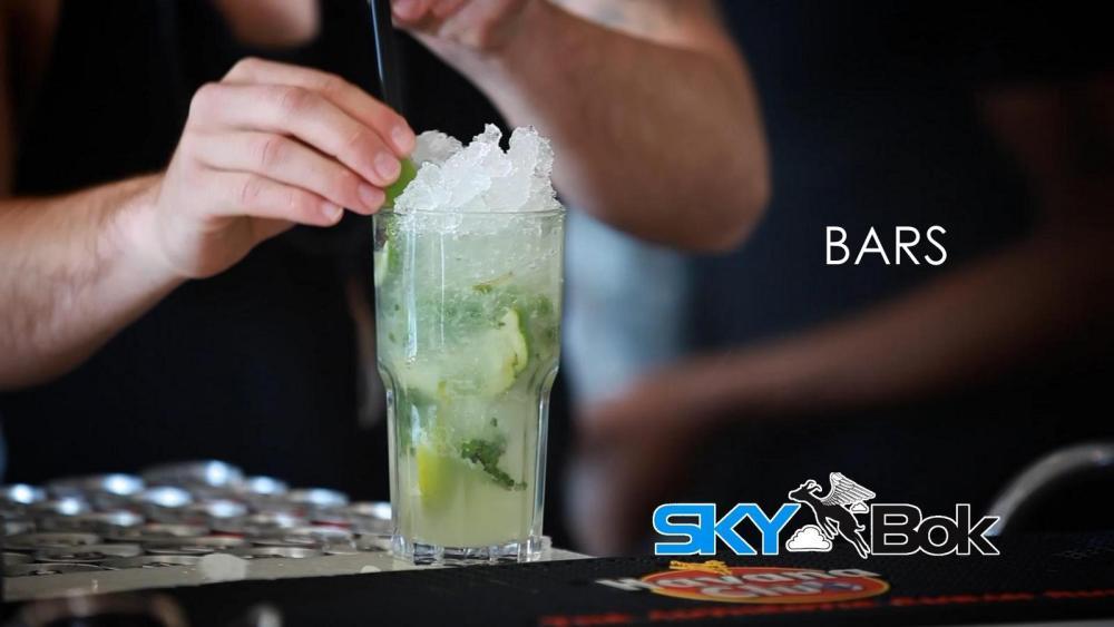 Skybok