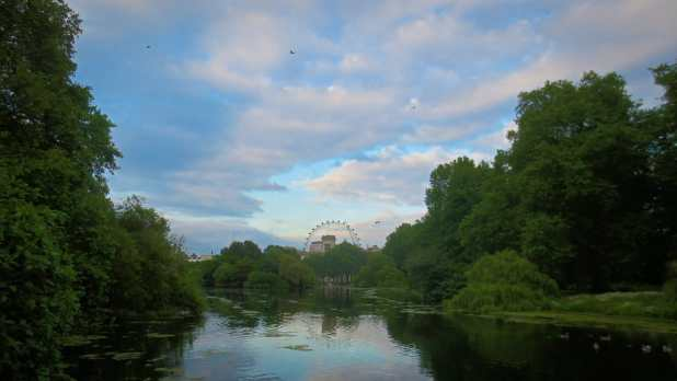 London Eye from St. James Park