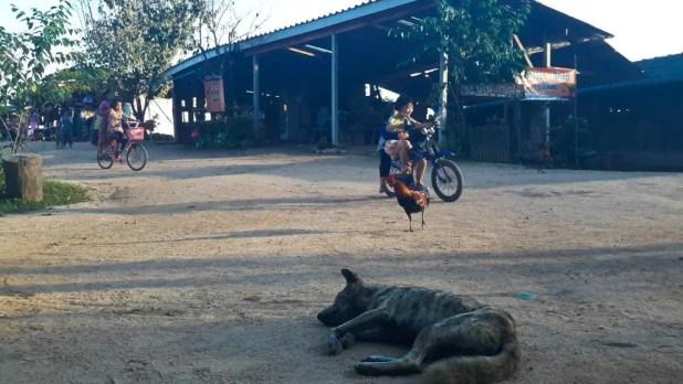 Kids Playing in Village
