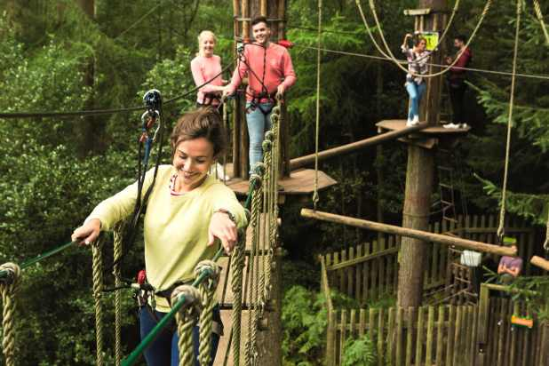 Go Ape Aberfoyle Tree Course
