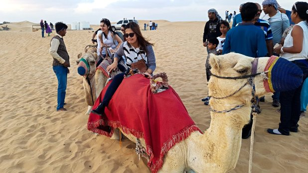 Desert Safari Camel Ride