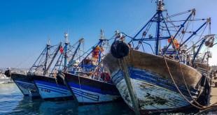 Essaouira Boats