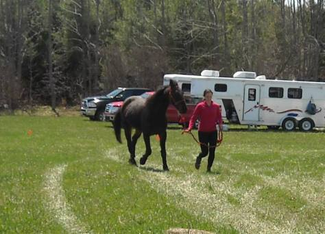 Anastasija and Ares - final trot out for the vets