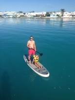 Paddle boarding with a little passenger.