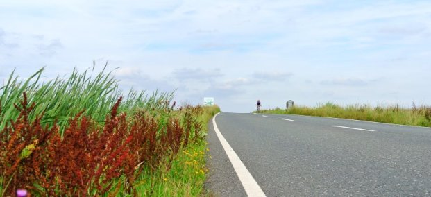 The Skylark Sportive - putting you on the road to cycling contentment!
