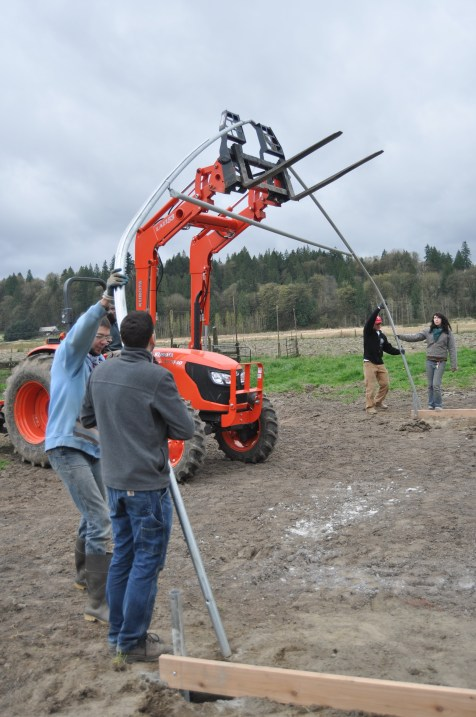 Time to hoist the first frame into place. It took a few tries with the tractor to lift it up.