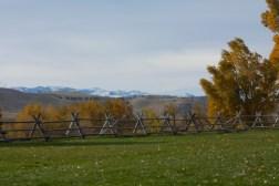 SABourne_montana_fence