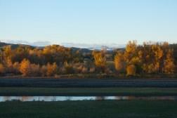 SABourne_montana_yellowstone_river4
