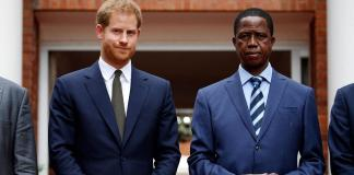 Prince Harry to facilitate elephant move from Botswana to Zambia