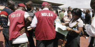 sky news africa Nigeria's drug agency sized 481.097kg substance, arrests 462 suspects