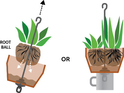 How to add plants around rod.
