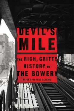 Book cover of Devil's Mile