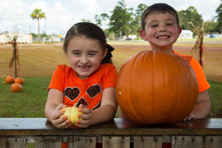 One Pumpkin Two!