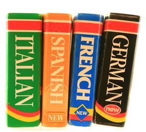Understanding the Untranslatable