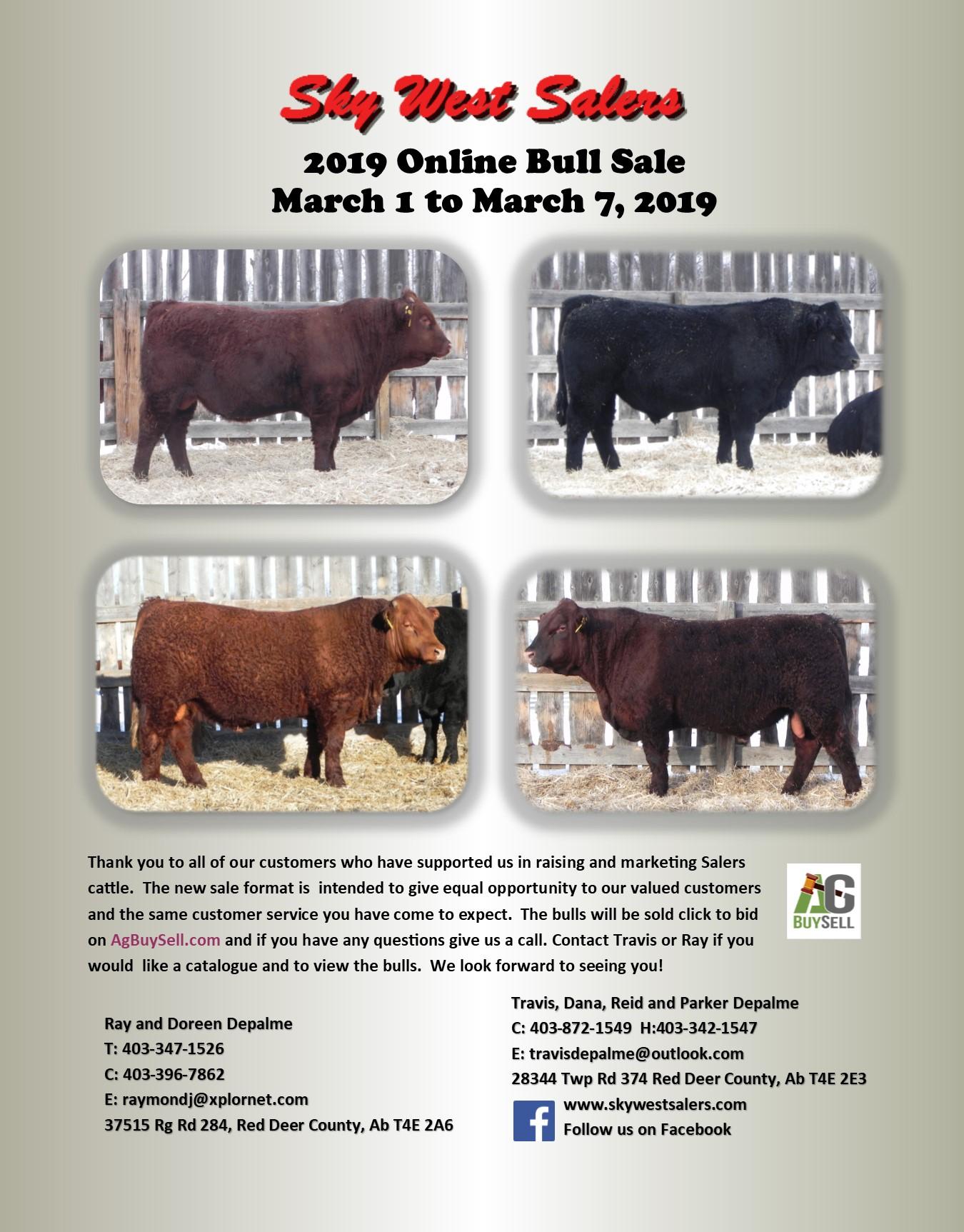 a014785a4a6b3 2019 Online Bull Sale