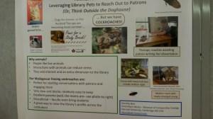 Kackerlackor som terapi husdjur?! We've definitely heard everything now!