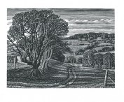 Chilcombe II Howard Phipps wood engraving 4.5 x 6 inches £250 framed