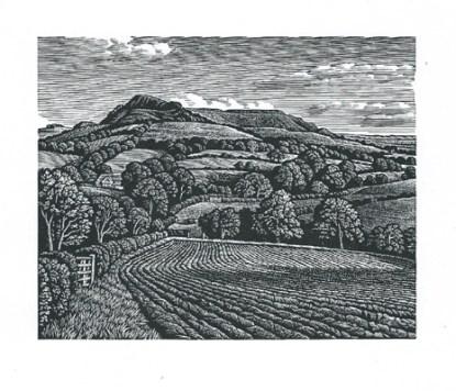 Eggardon Hill Howard Phipps woodcut print 4 x 5inches £230 framed