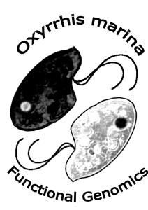 Oxyrrhis marina Functional Genomics logo