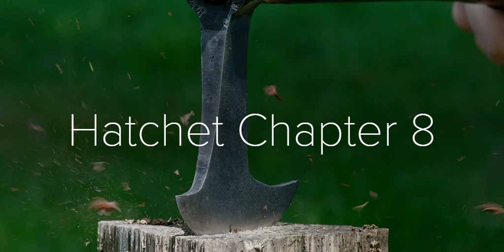 Hatchet Chapter 8