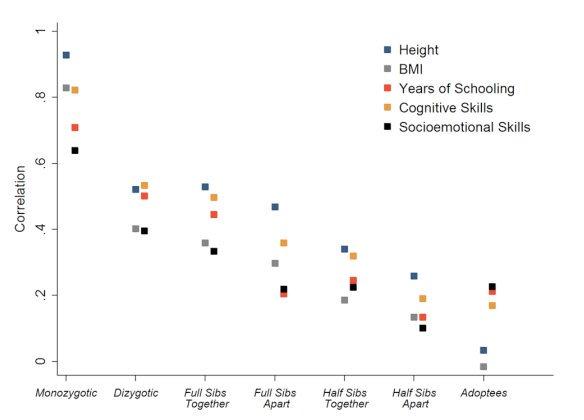 genetics_chart.jpg