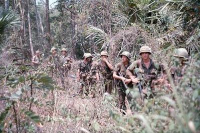 American Soldiers On Patrol In Dense Bush