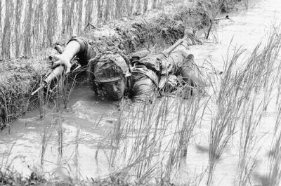 Soldier Staying Low in a Rice Paddy