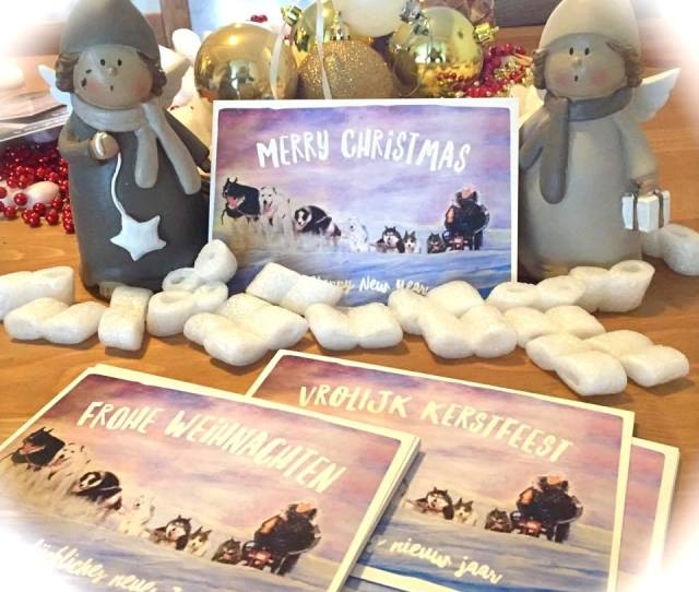 Charity Husky Christmas Cards