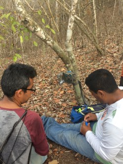 cameras to study wild life in the reforestation project!