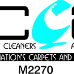 How to choose my carpet cleaners