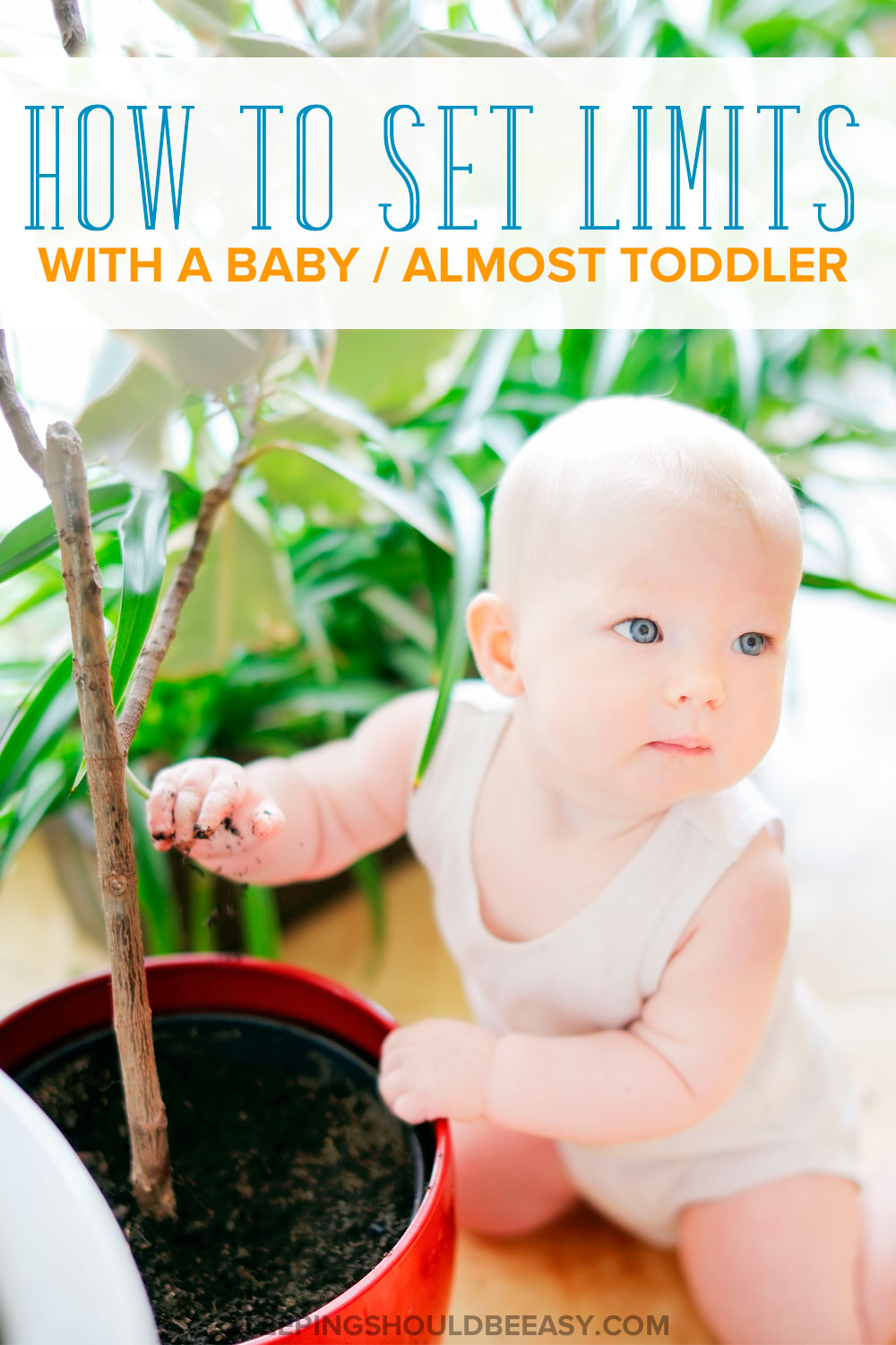Baby and toddler-aged child reaching her hand into a plant