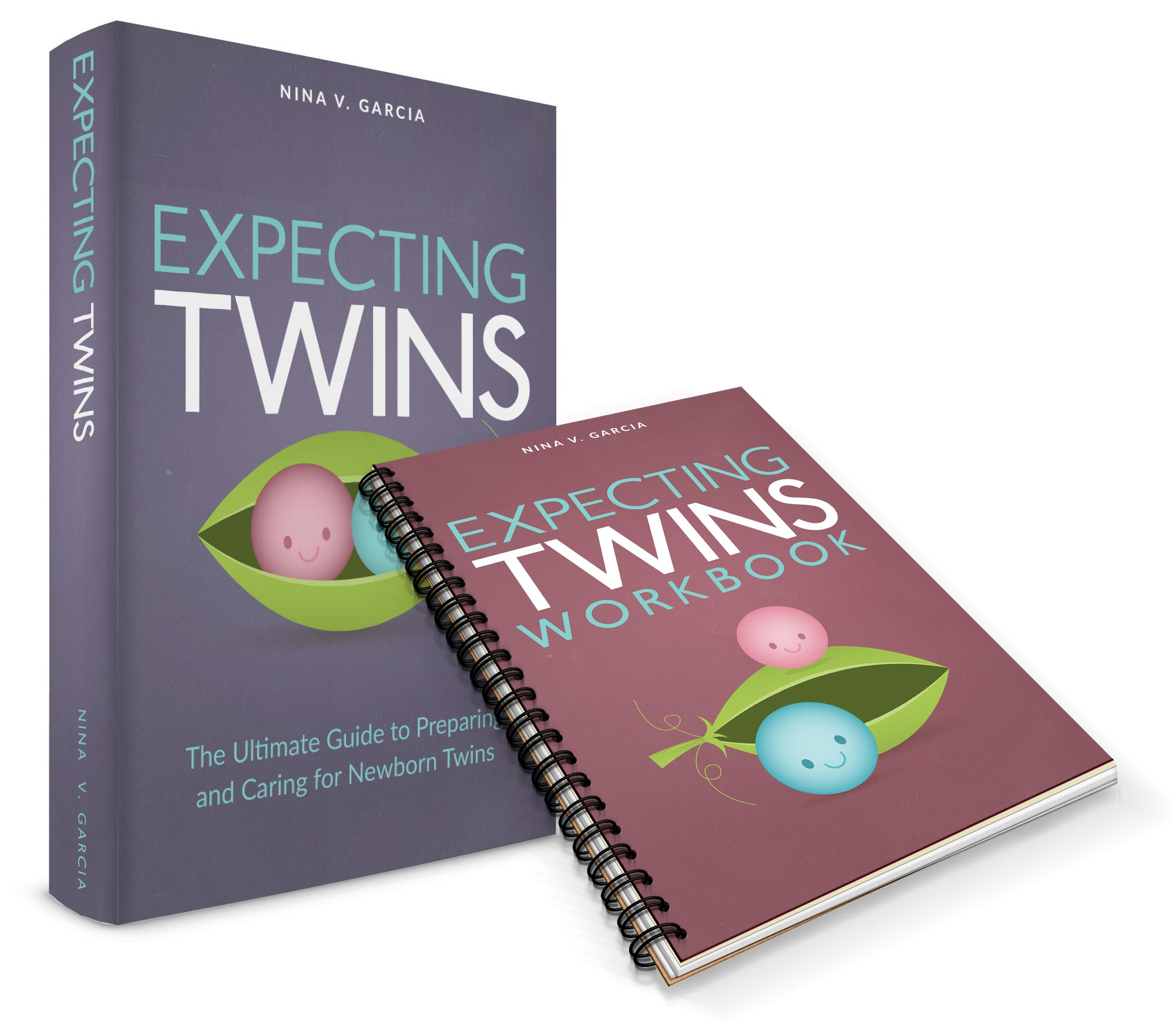 Guide and workbook on expecting twins