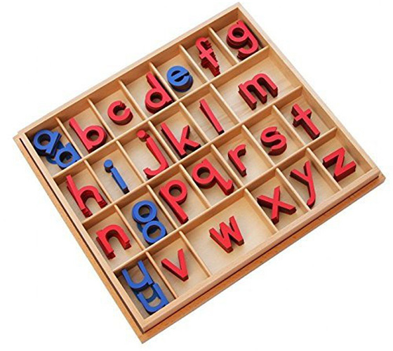 Kid Advance Montessori Small Movable Alphabets