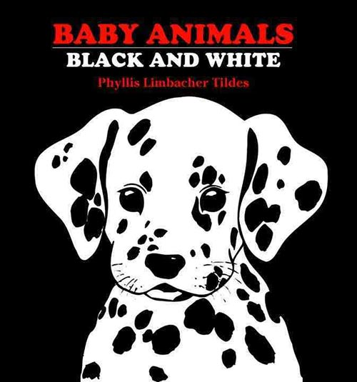 Baby Animals: Black and White by Phyllis Limbacher Tildes