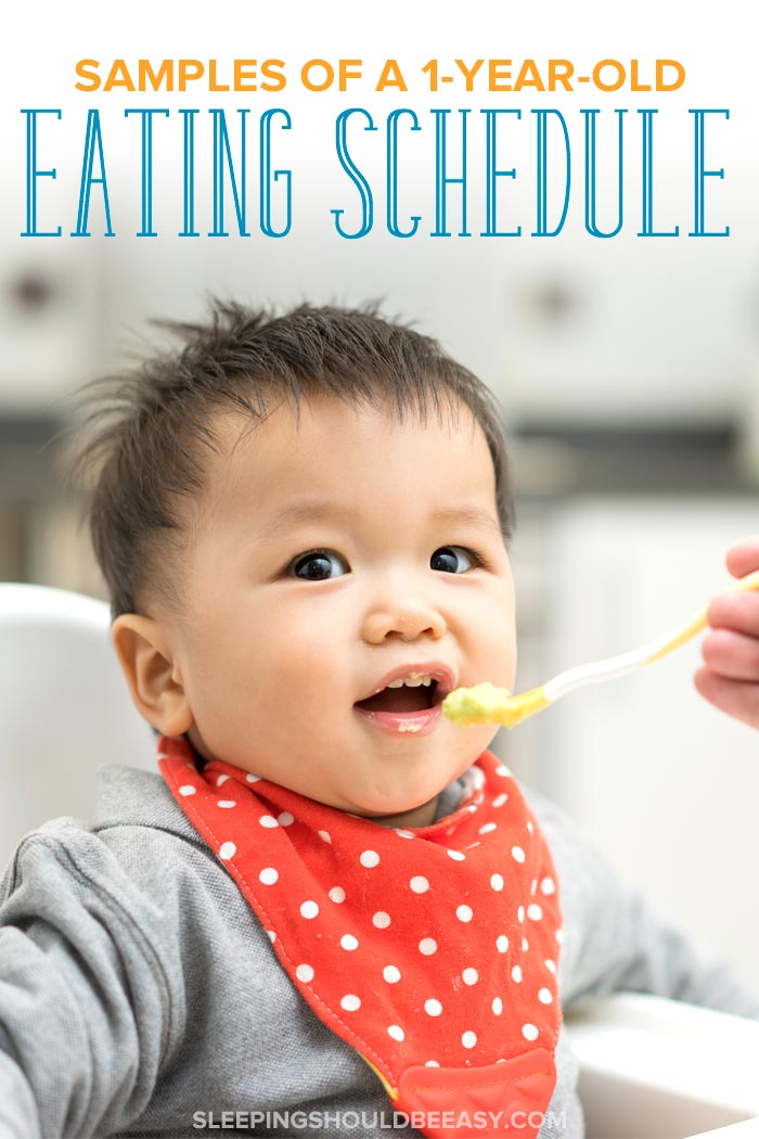 1 Year Old Eating Schedule